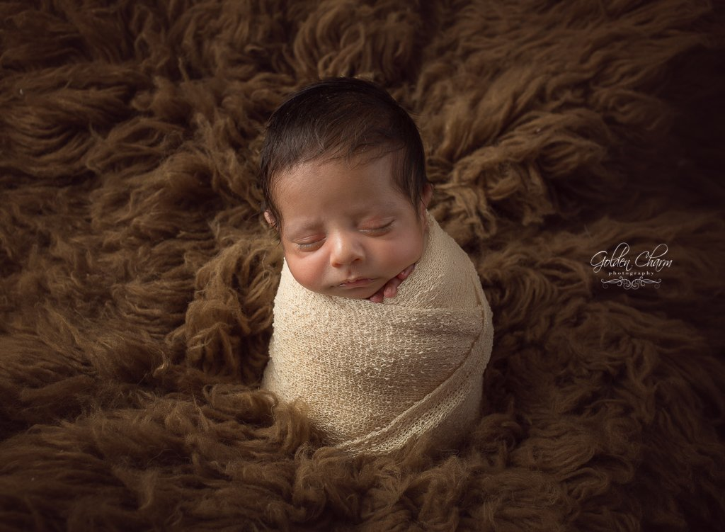 buffalo grove newborn photographer